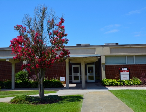 Photo of campus building with red tree growing in front