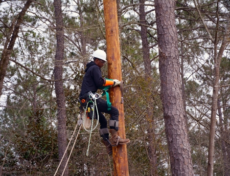 Electric lineman student climbing a pole